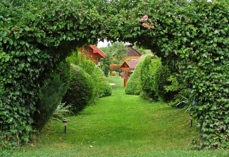 garden-1345584_960_720